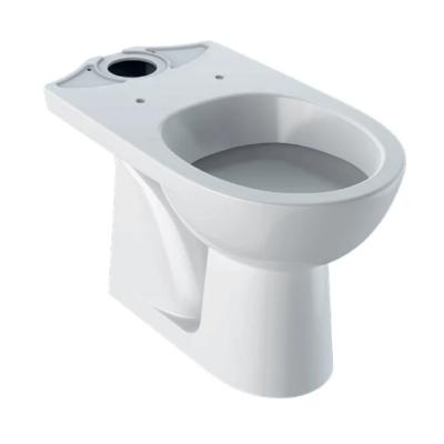 Geberit Selnova alsó kifolyású, mélyöblítésű, monoblokkos WC - 500.281.01.1 (M33201000)
