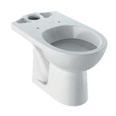 Geberit Selnova hátsó kifolyású, mélyöblítésű, monoblokkos WC 500.282.01.1 (M33200000)