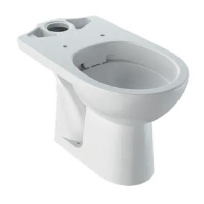 Geberit Selnova hátsó kifolyású, monoblokkos WC, Rimfree (öblítőperem nélkül) 500.283.01.1 (M33220000)
